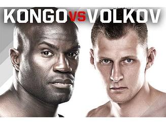 cheick-kongo-fight
